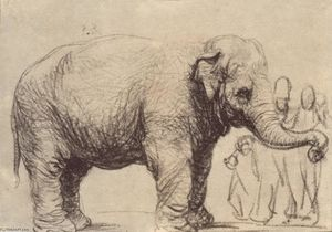 Rembrandt Van Rijn - An Elephant, in the Background a Group of Spectators