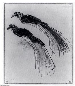 Rembrandt Van Rijn - Two Studies Of A Bird Of Paradise