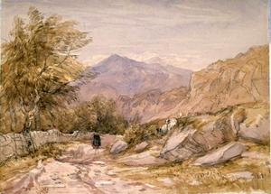 David Cox - A Welsh Mountain Road