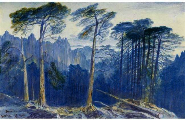 The Pine Forest Of Bavella, Corsica by Edward Lear (1812-1888, United Kingdom) | Museum Art Reproductions Edward Lear | WahooArt.com