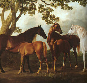 Buy George Stubbs