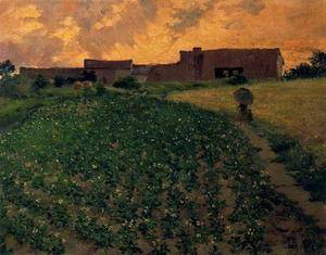 Ignacio Díaz Olano - Potato field