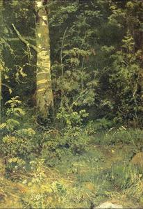 Ivan Ivanovich Shishkin - Birch and pocks
