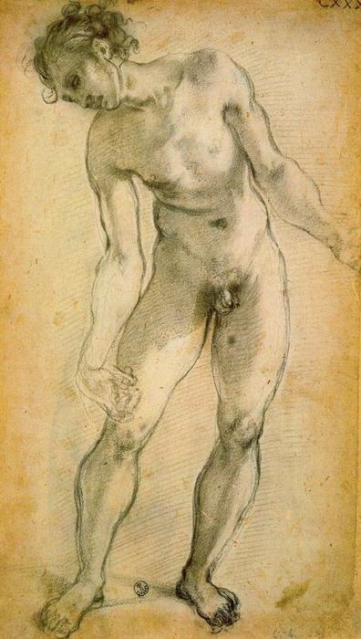Male Nude by Jacopo Carucci (Pontormo) (1494-1557, Italy)