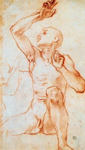 Jacopo Carucci (Pontormo) - Seated Male Nule
