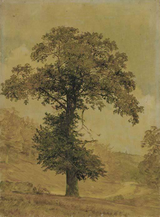 Study of a Tree by Jasper Francis Cropsey (1823-1900, United States)