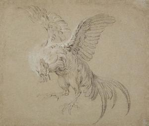 Jean-Baptiste Oudry - A Fighting Rooster
