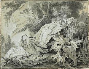 Jean-Baptiste Oudry - A Wild Swan Attacked by a Dog