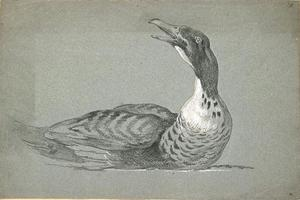 Jean-Baptiste Oudry - Duck swimming