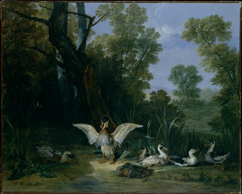 Ducks Resting in Sunshine by Jean-Baptiste Oudry (1686-1755, France) | Art Reproduction | WahooArt.com
