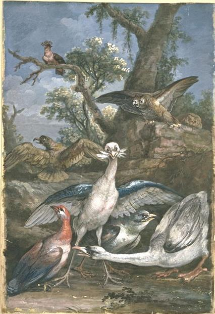Eight birds in a landscape by Jean-Baptiste Oudry (1686-1755, France)