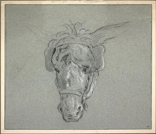Head of a donkey by Jean-Baptiste Oudry (1686-1755, France)