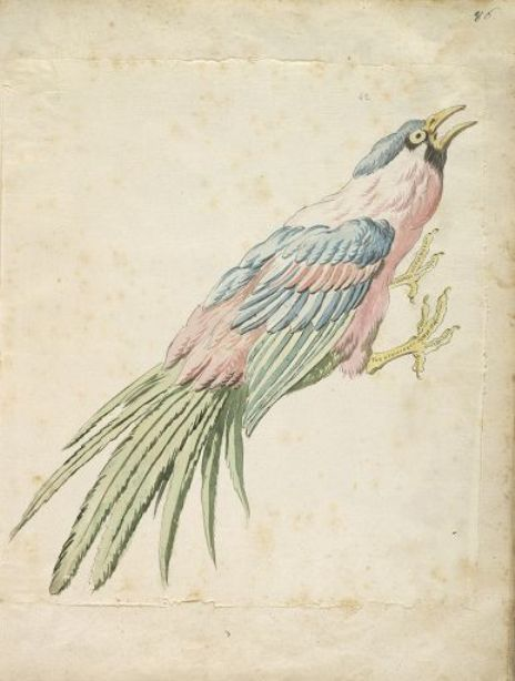 Squawking Bird with Talons Extended to the Right by Jean-Baptiste Oudry (1686-1755, France)