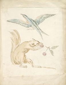 Jean-Baptiste Oudry - Squirrel Eating Cherries and Bird with Wings Extended