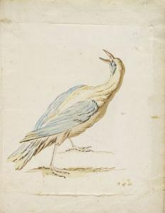 Jean-Baptiste Oudry - Standing Bird Looking Upward and Behind