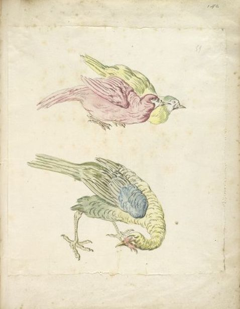 Three Birds, Two Hunched Together and One Looking Back to the Left by Jean-Baptiste Oudry (1686-1755, France)