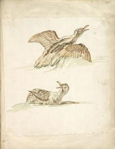Jean-Baptiste Oudry - Two Ducks in the Water, One Taking Flight