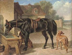 John Frederick Herring Senior - A farmer's hack and greyhounds