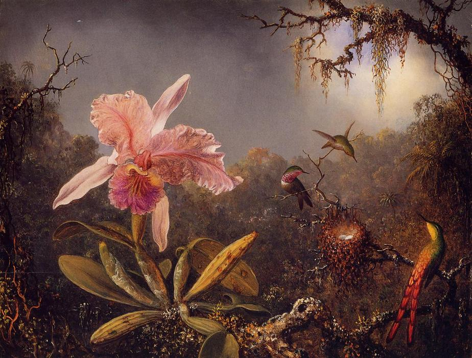 Cattleya Orchid and Three Brazilian Hummingbirds, 1871 by Martin Johnson Heade (1819-1904, United States) | Museum Quality Reproductions | WahooArt.com