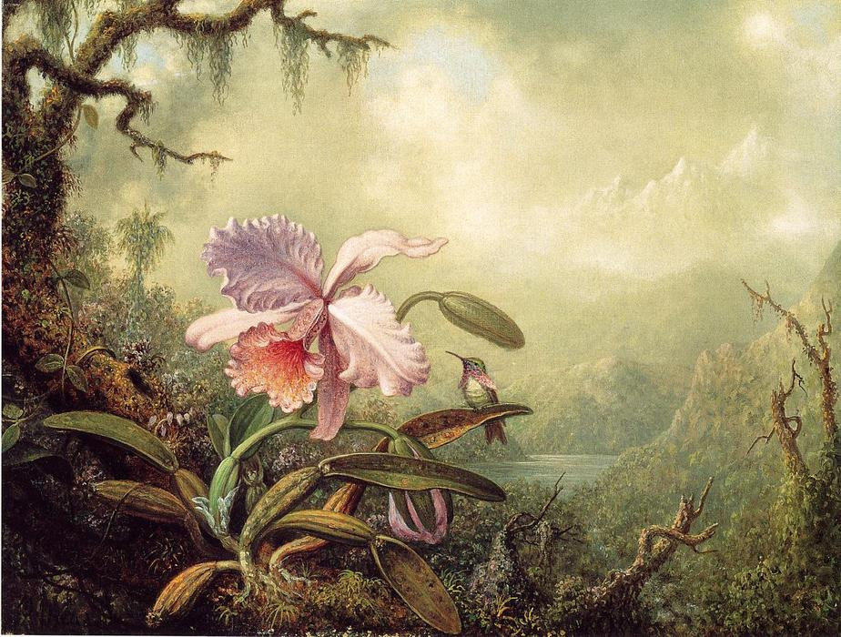 Heliodore`s Woodstar and a Pink Orchid, 1875 by Martin Johnson Heade (1819-1904, United States) | Painting Copy | WahooArt.com