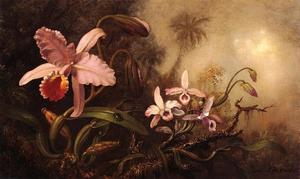 Martin Johnson Heade - Orchids and a Beetle