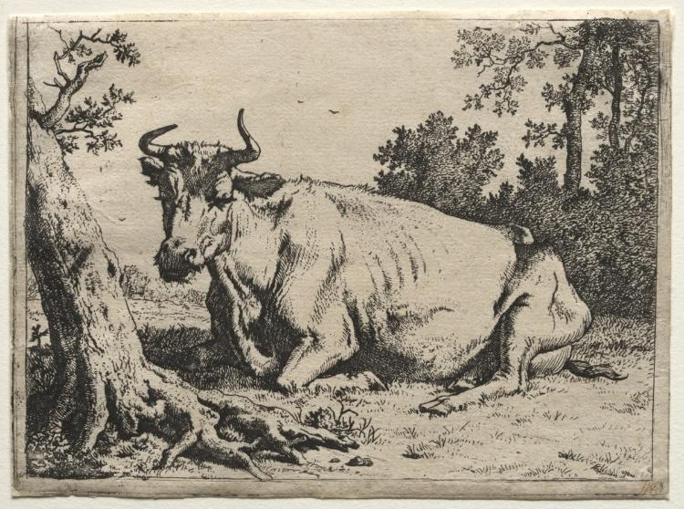 The cow lying down near a tree by Paulus Potter (1625-1654, Netherlands)
