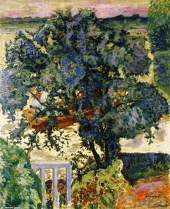 Pierre Bonnard - Tree by the River