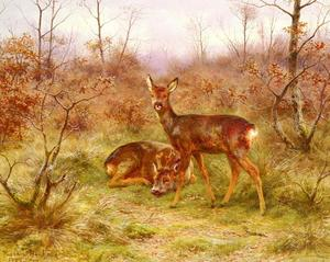 Rosa Bonheur - A couple of deer in the Forest of Fontainebleau