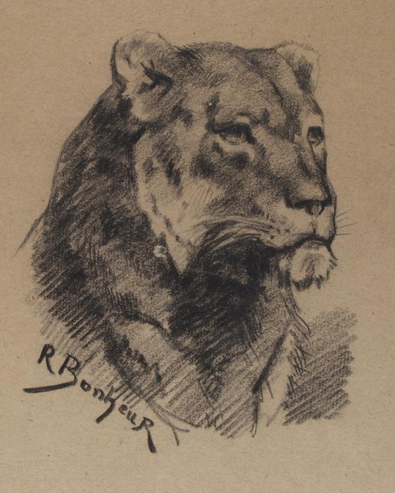 Head of a Lion 1 by Rosa Bonheur (1822-1899, France) | Museum Quality Reproductions | WahooArt.com