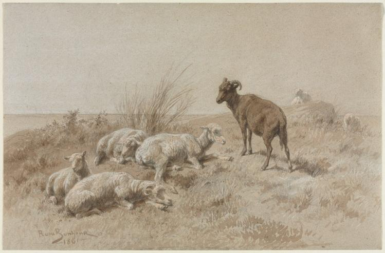 Sheep by Rosa Bonheur (1822-1899, France) | Museum Quality Reproductions | WahooArt.com