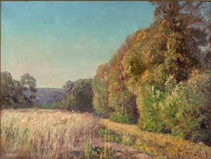Theodore Clement Steele - At the Edge of the Field (Orchard in Summer)