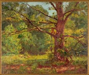 Theodore Clement Steele - The Big Oak (The Oak in Springtime)
