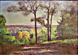 Theodore Clement Steele - Trees on the Hill