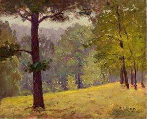 Theodore Clement Steele - Untitled (Heavily Wooded Slope)