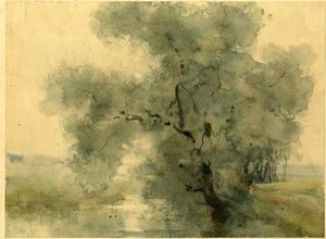 Theodore Clement Steele - Watercolor Study of Large Tree