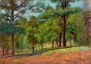 Theodore Clement Steele - Wooded Slope (The Hill Slope, Midsummer)