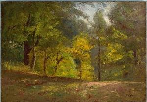 Theodore Clement Steele - Woodland Scene (Forest Interior) 1