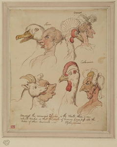 Thomas Rowlandson - Comparative studies of human and animal heads