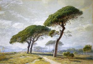 William Stanley Haseltine - View of Cannes with Parasol Pines