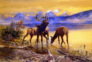 Charles Marion Russell - Elk in Lake McDonald