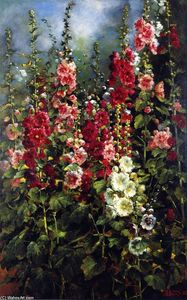 Mathias Joseph Alten - Hollyhocks