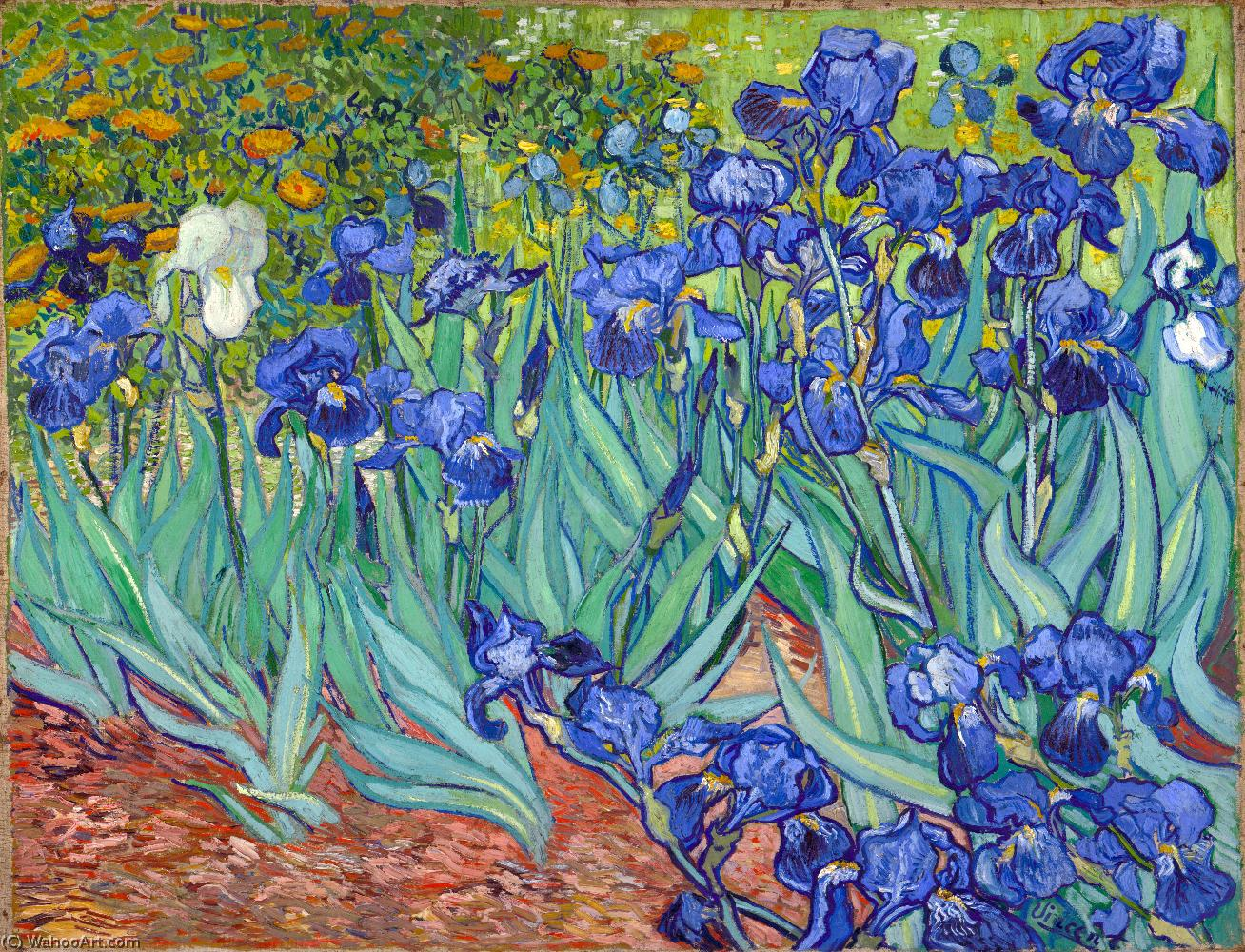 Irises, 1889 by Vincent Van Gogh (1853-1890, Netherlands) | Painting Copy | WahooArt.com