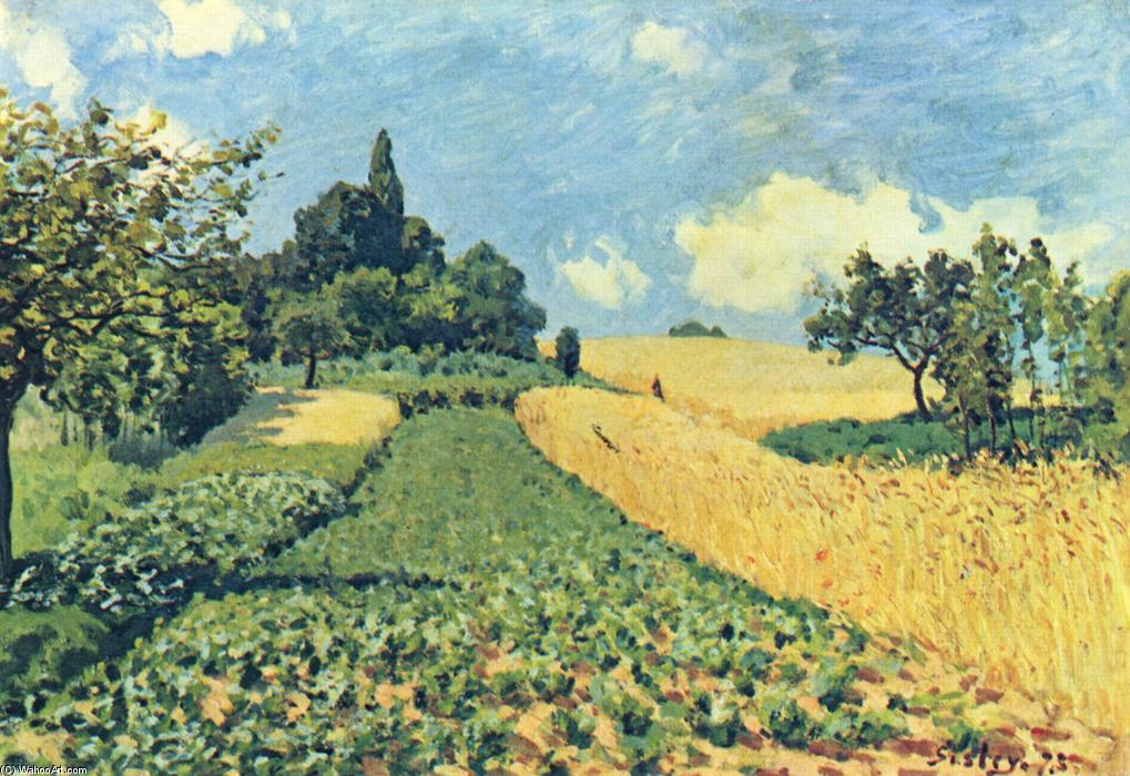 Order Oil Painting : Grain fields on the hills of Argenteuil, 1873 by Alfred Sisley (1839-1899, France) | WahooArt.com