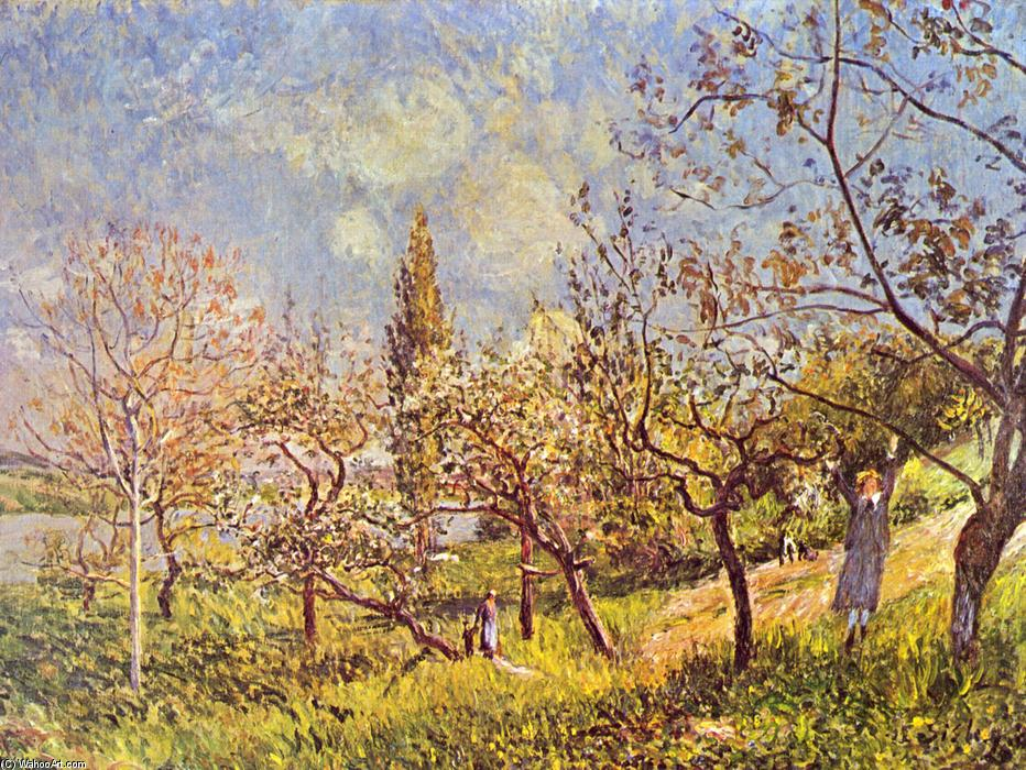 Orchard in spring, Oil On Canvas by Alfred Sisley (1839-1899, France)