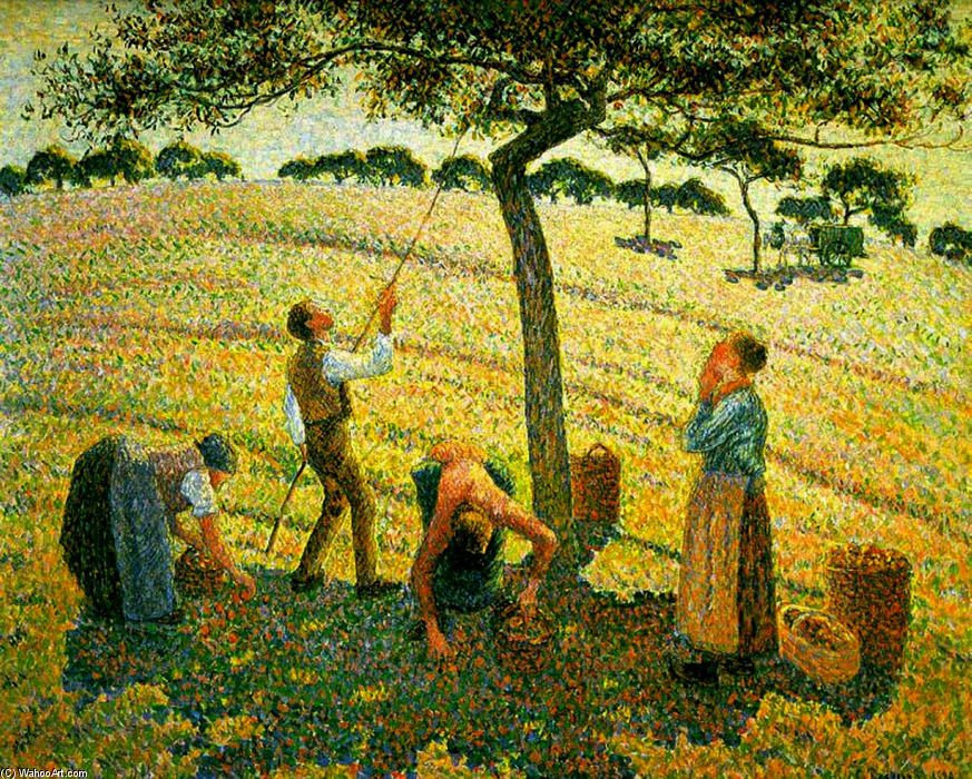 Apple Picking at Eragny-sur-Epte, Oil On Canvas by Camille Pissarro (1830-1903, Virgin Islands)
