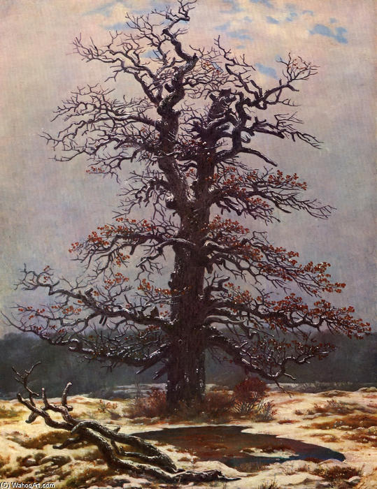 Oak tree in the snow, Oil On Canvas by Caspar David Friedrich (1774-1840, Germany)
