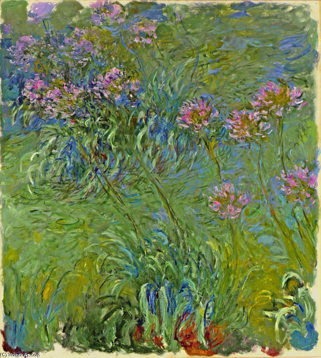 Agapanthus Flowers, 1917 by Claude Monet (1840-1926, France) | Reproductions Claude Monet | WahooArt.com
