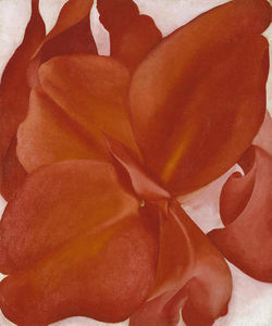 Georgia O-keeffe - Red Cannas