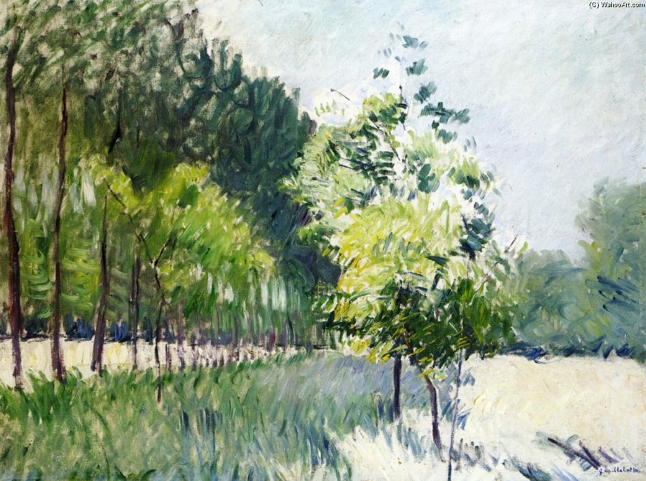 Orchard and avenue of trees, Oil On Canvas by Gustave Caillebotte (1848-1894, France)