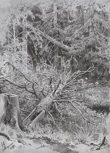 Ivan Ivanovich Shishkin - In the forest. Fallen Tree